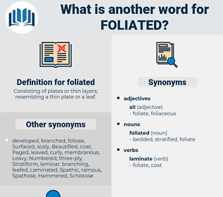 foliated, synonym foliated, another word for foliated, words like foliated, thesaurus foliated