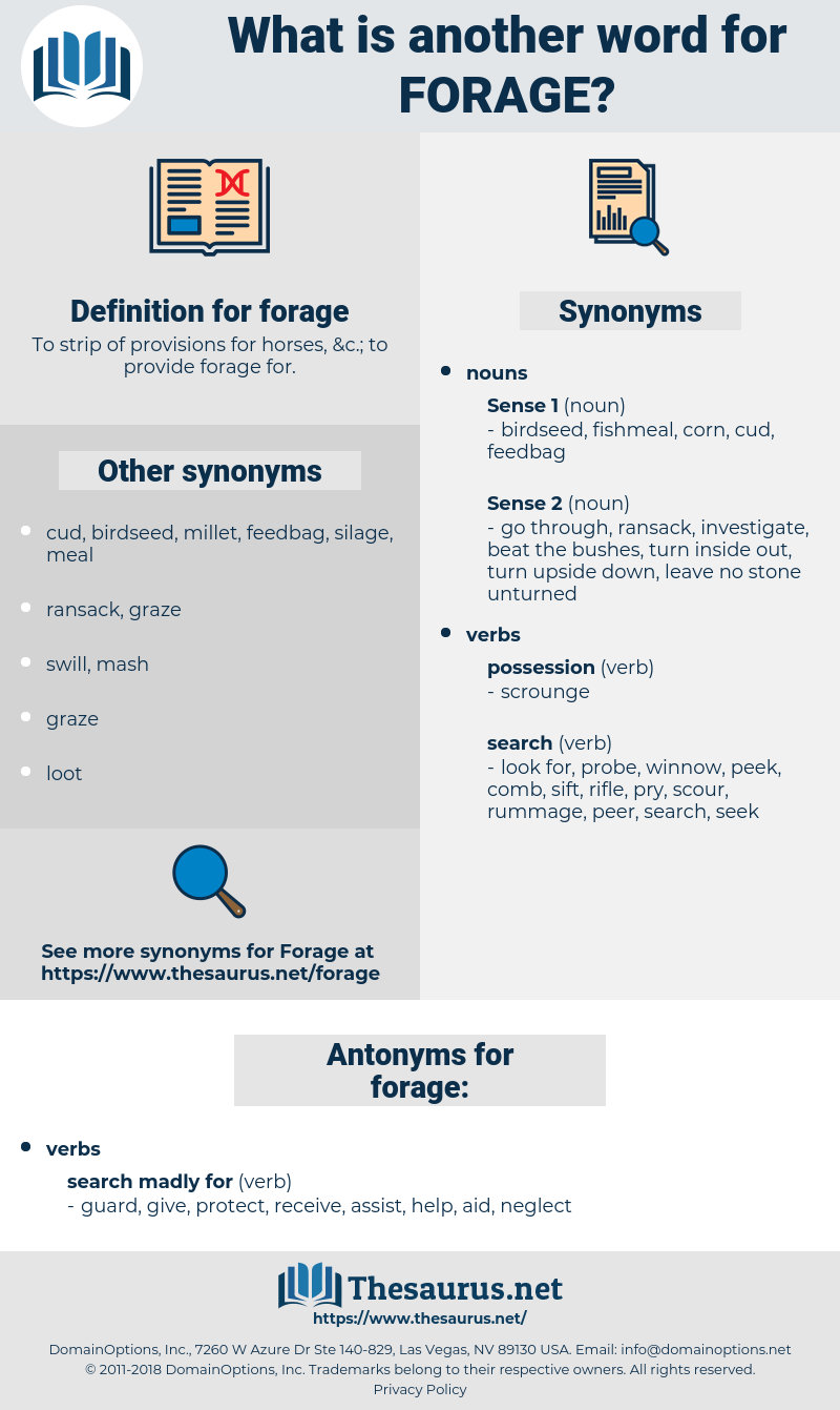 forage, synonym forage, another word for forage, words like forage, thesaurus forage