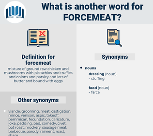 forcemeat, synonym forcemeat, another word for forcemeat, words like forcemeat, thesaurus forcemeat