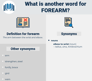 forearm, synonym forearm, another word for forearm, words like forearm, thesaurus forearm
