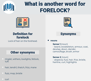 forelock, synonym forelock, another word for forelock, words like forelock, thesaurus forelock