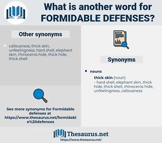 formidable defenses, synonym formidable defenses, another word for formidable defenses, words like formidable defenses, thesaurus formidable defenses