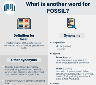 fossil, synonym fossil, another word for fossil, words like fossil, thesaurus fossil