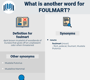 foulmart, synonym foulmart, another word for foulmart, words like foulmart, thesaurus foulmart