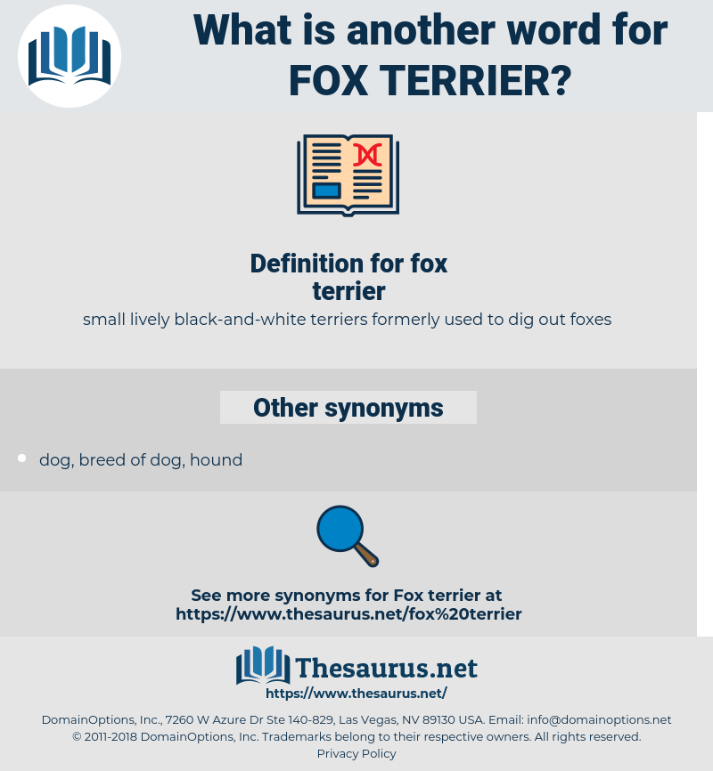 fox terrier, synonym fox terrier, another word for fox terrier, words like fox terrier, thesaurus fox terrier