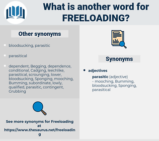 freeloading, synonym freeloading, another word for freeloading, words like freeloading, thesaurus freeloading