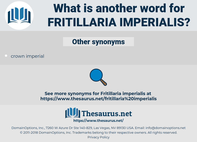 Fritillaria Imperialis, synonym Fritillaria Imperialis, another word for Fritillaria Imperialis, words like Fritillaria Imperialis, thesaurus Fritillaria Imperialis