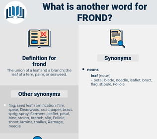 frond, synonym frond, another word for frond, words like frond, thesaurus frond