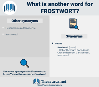 frostwort, synonym frostwort, another word for frostwort, words like frostwort, thesaurus frostwort