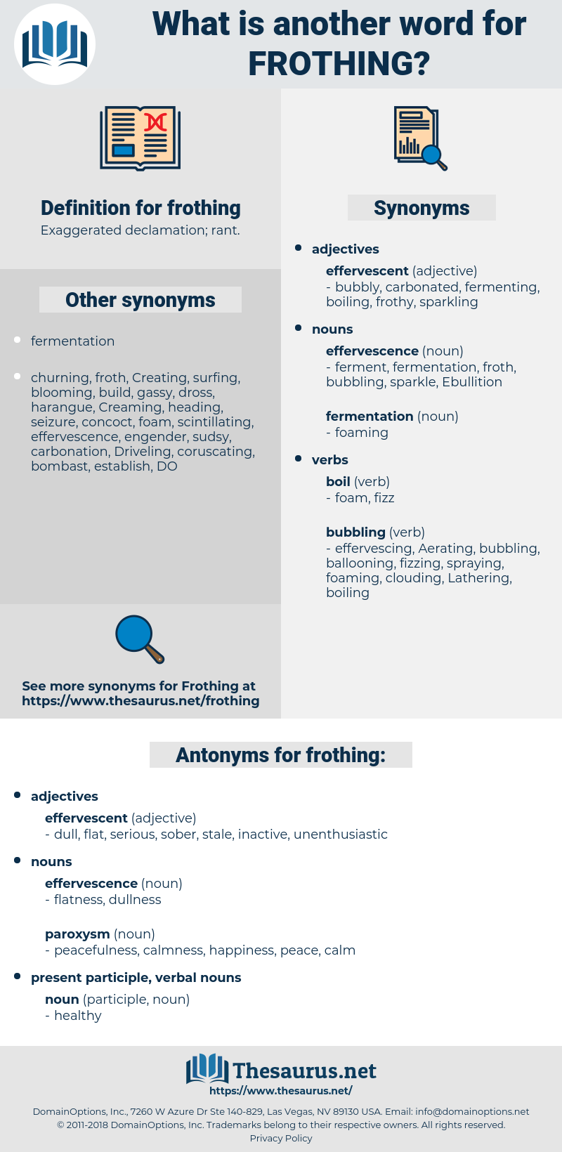 frothing, synonym frothing, another word for frothing, words like frothing, thesaurus frothing