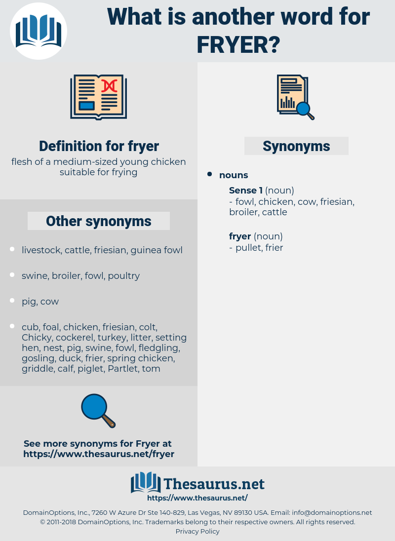 fryer, synonym fryer, another word for fryer, words like fryer, thesaurus fryer