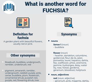 fuchsia, synonym fuchsia, another word for fuchsia, words like fuchsia, thesaurus fuchsia