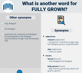 fully grown, synonym fully grown, another word for fully grown, words like fully grown, thesaurus fully grown