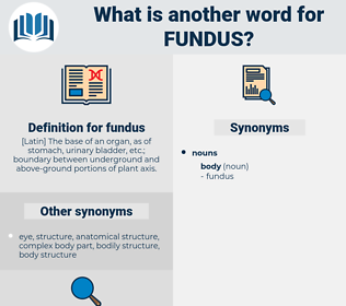 fundus, synonym fundus, another word for fundus, words like fundus, thesaurus fundus