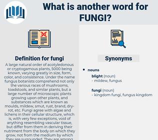 fungi, synonym fungi, another word for fungi, words like fungi, thesaurus fungi