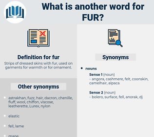 fur, synonym fur, another word for fur, words like fur, thesaurus fur