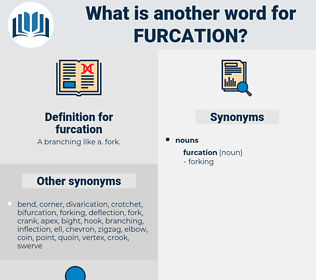 furcation, synonym furcation, another word for furcation, words like furcation, thesaurus furcation