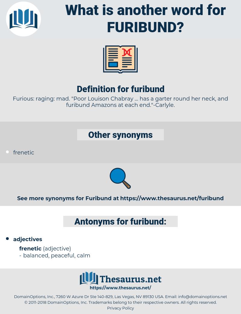 furibund, synonym furibund, another word for furibund, words like furibund, thesaurus furibund