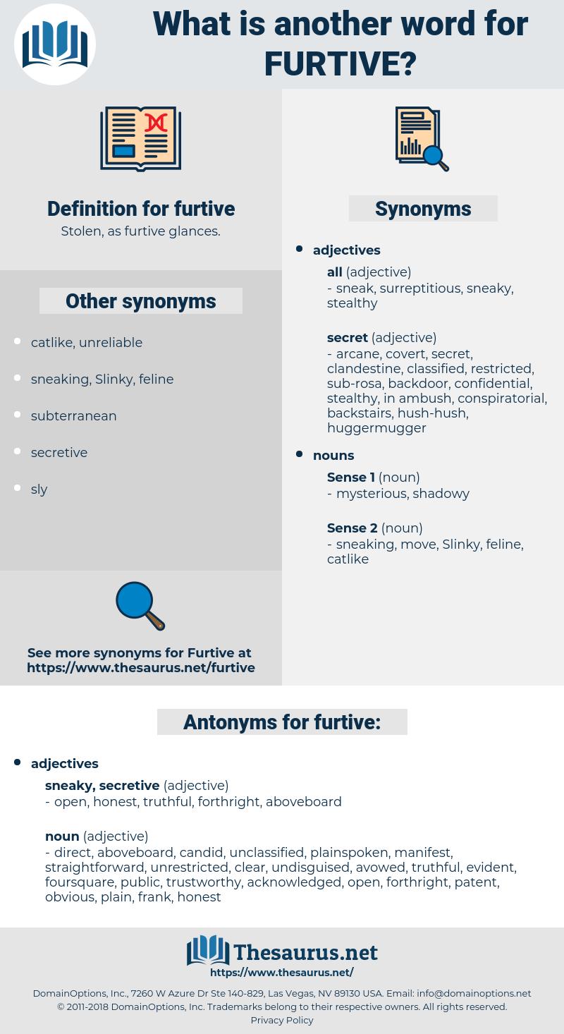 furtive, synonym furtive, another word for furtive, words like furtive, thesaurus furtive
