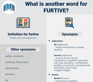 furtive, synonym furtive, another word for furtive, words like furtive, thesaurus furtive