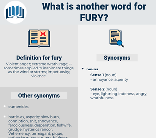fury, synonym fury, another word for fury, words like fury, thesaurus fury