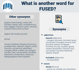 fused, synonym fused, another word for fused, words like fused, thesaurus fused