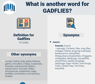 Gadflies, synonym Gadflies, another word for Gadflies, words like Gadflies, thesaurus Gadflies
