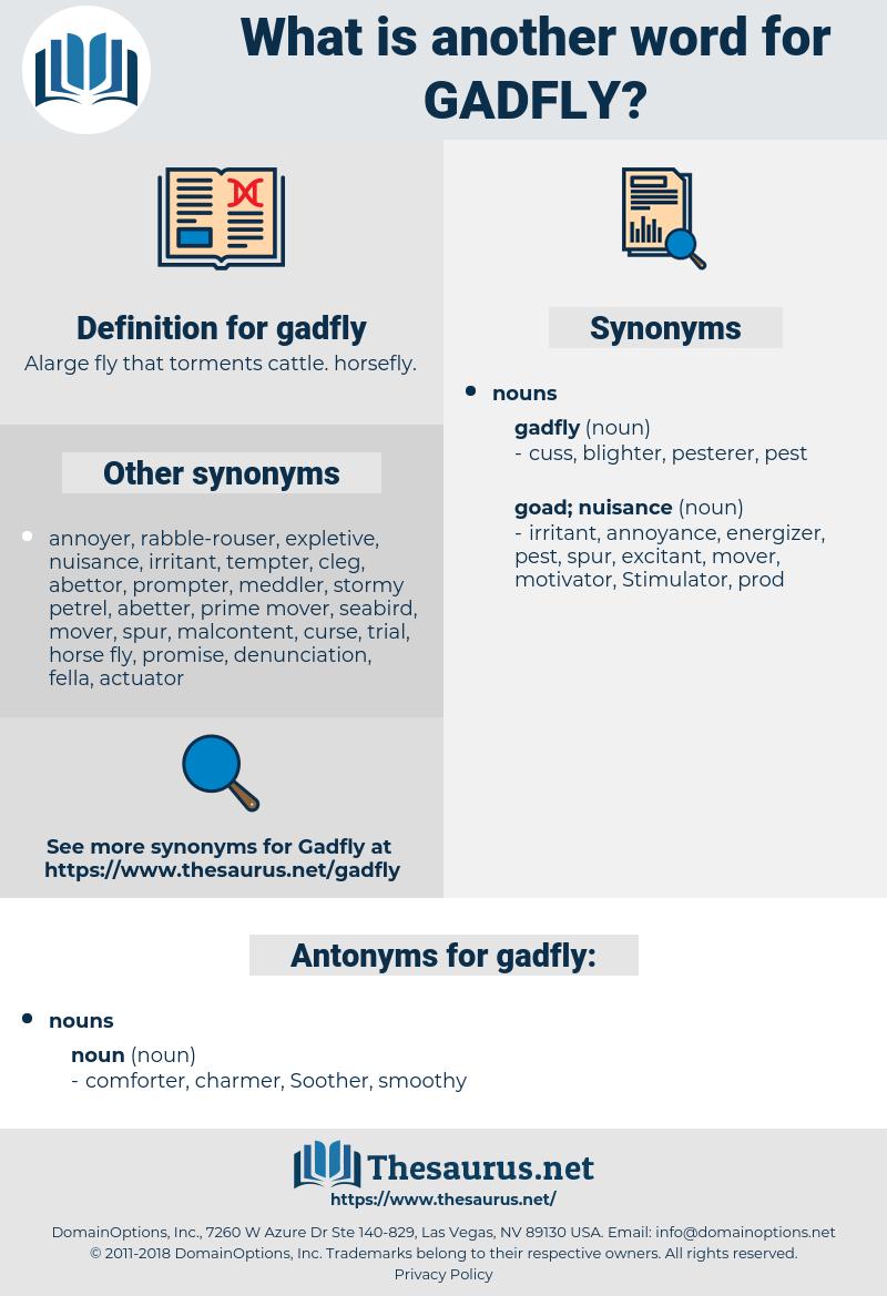 gadfly definition