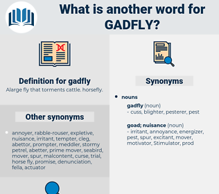 gadfly, synonym gadfly, another word for gadfly, words like gadfly, thesaurus gadfly