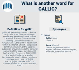 gallic, synonym gallic, another word for gallic, words like gallic, thesaurus gallic