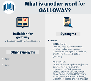 galloway, synonym galloway, another word for galloway, words like galloway, thesaurus galloway
