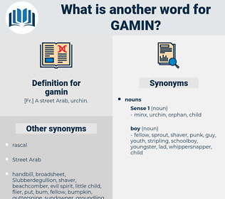 gamin, synonym gamin, another word for gamin, words like gamin, thesaurus gamin