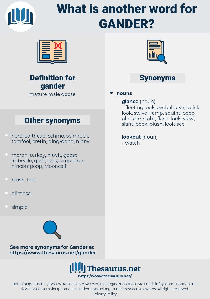 gander, synonym gander, another word for gander, words like gander, thesaurus gander