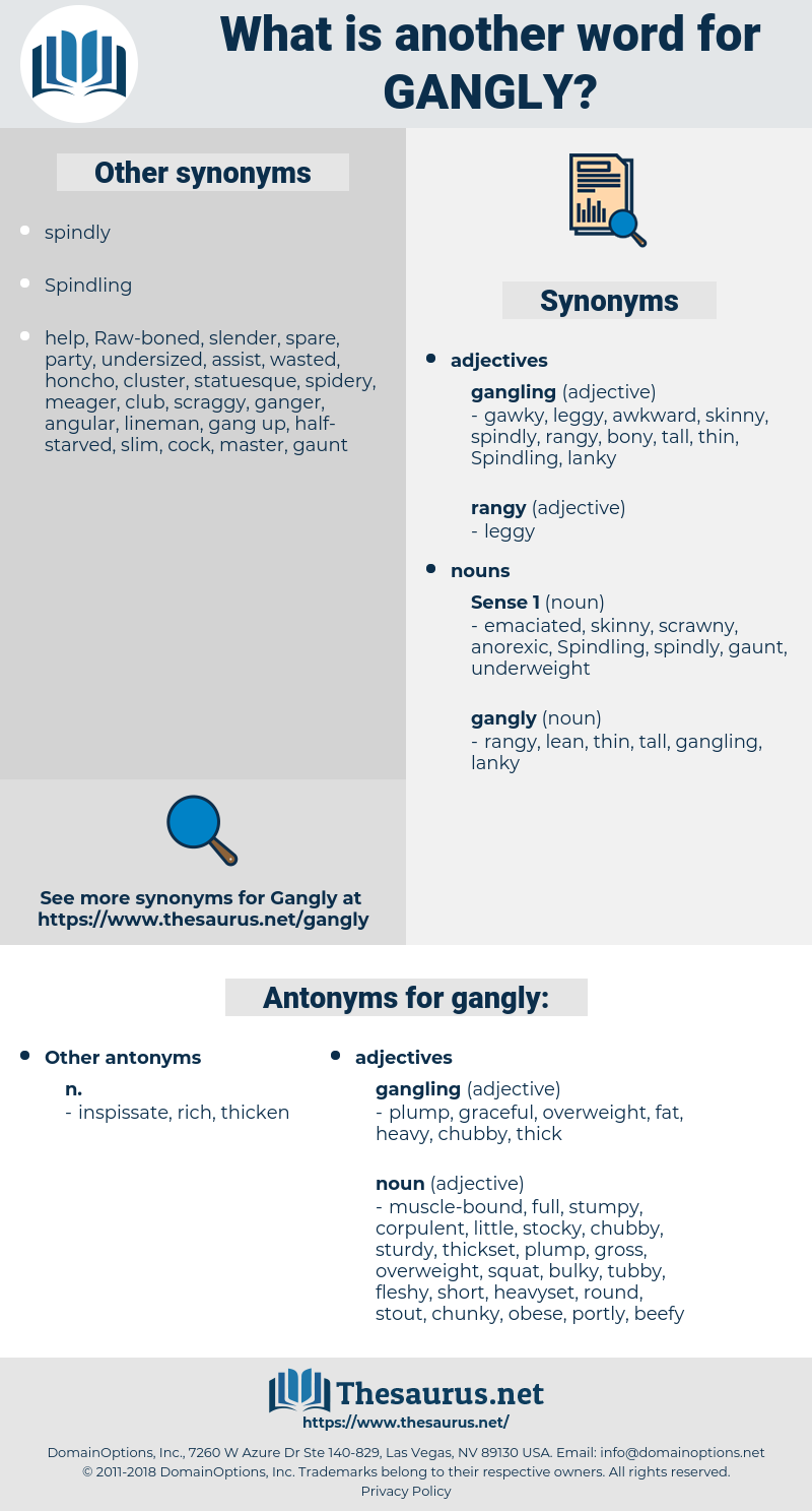 gangly, synonym gangly, another word for gangly, words like gangly, thesaurus gangly