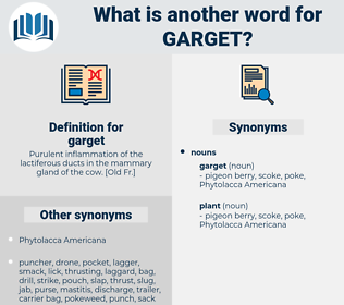 garget, synonym garget, another word for garget, words like garget, thesaurus garget