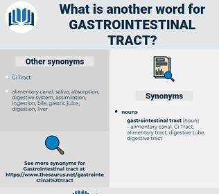 gastrointestinal tract, synonym gastrointestinal tract, another word for gastrointestinal tract, words like gastrointestinal tract, thesaurus gastrointestinal tract