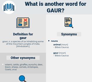 gaur, synonym gaur, another word for gaur, words like gaur, thesaurus gaur