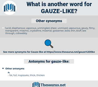 gauze-like, synonym gauze-like, another word for gauze-like, words like gauze-like, thesaurus gauze-like