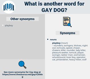 gay dog, synonym gay dog, another word for gay dog, words like gay dog, thesaurus gay dog