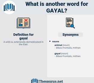 gayal, synonym gayal, another word for gayal, words like gayal, thesaurus gayal