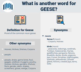 Geese, synonym Geese, another word for Geese, words like Geese, thesaurus Geese
