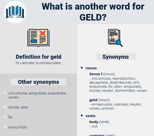 geld, synonym geld, another word for geld, words like geld, thesaurus geld
