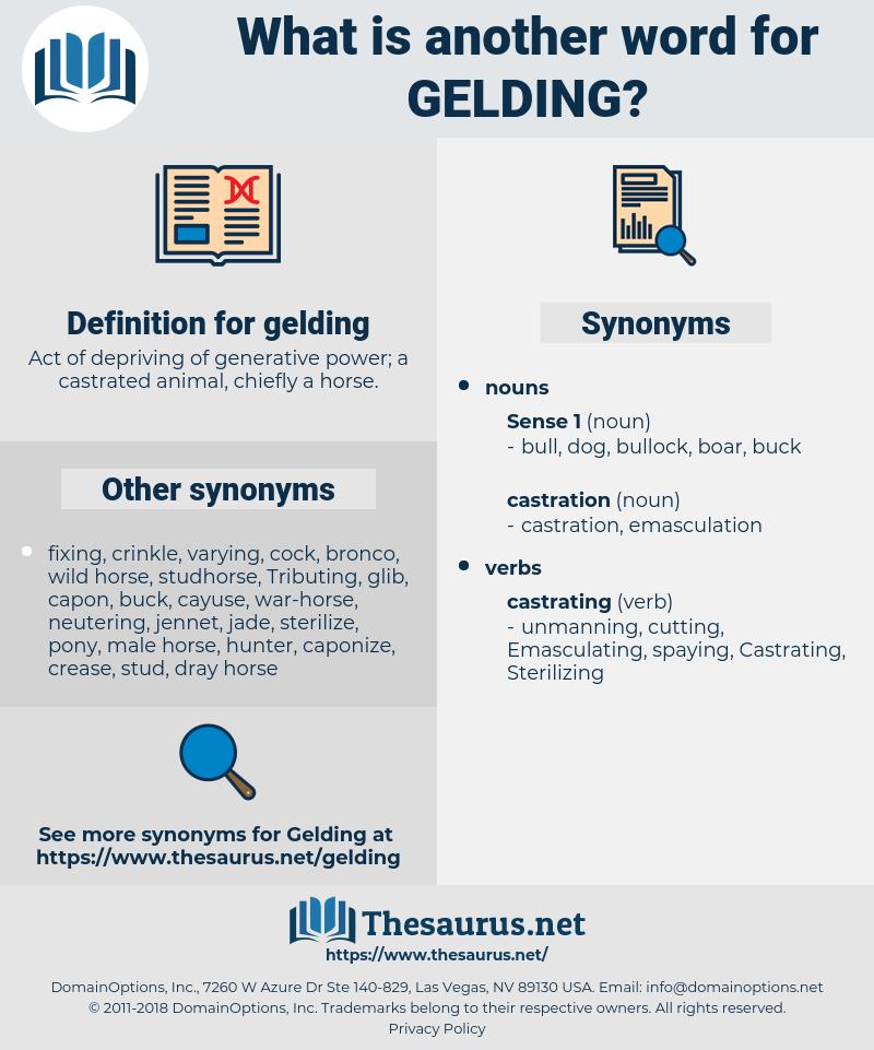gelding, synonym gelding, another word for gelding, words like gelding, thesaurus gelding
