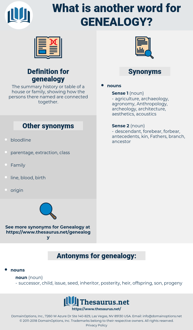 genealogy, synonym genealogy, another word for genealogy, words like genealogy, thesaurus genealogy