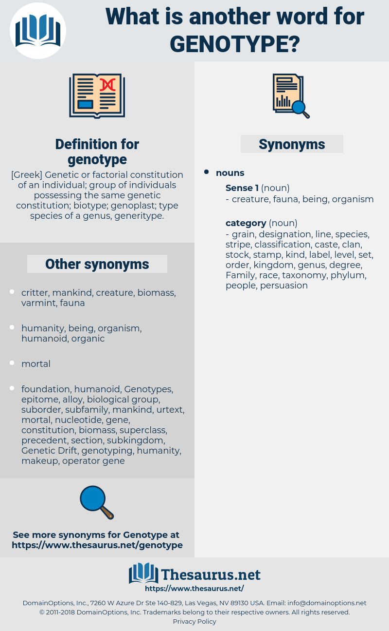 genotype, synonym genotype, another word for genotype, words like genotype, thesaurus genotype