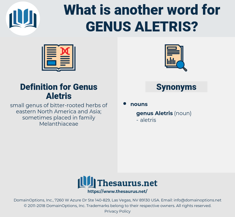 Genus Aletris, synonym Genus Aletris, another word for Genus Aletris, words like Genus Aletris, thesaurus Genus Aletris