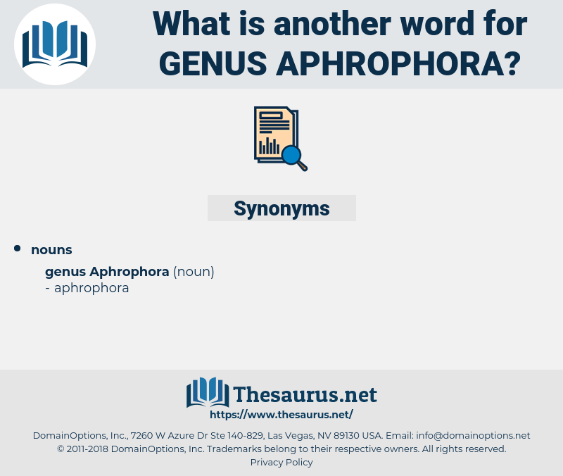 Genus Aphrophora, synonym Genus Aphrophora, another word for Genus Aphrophora, words like Genus Aphrophora, thesaurus Genus Aphrophora