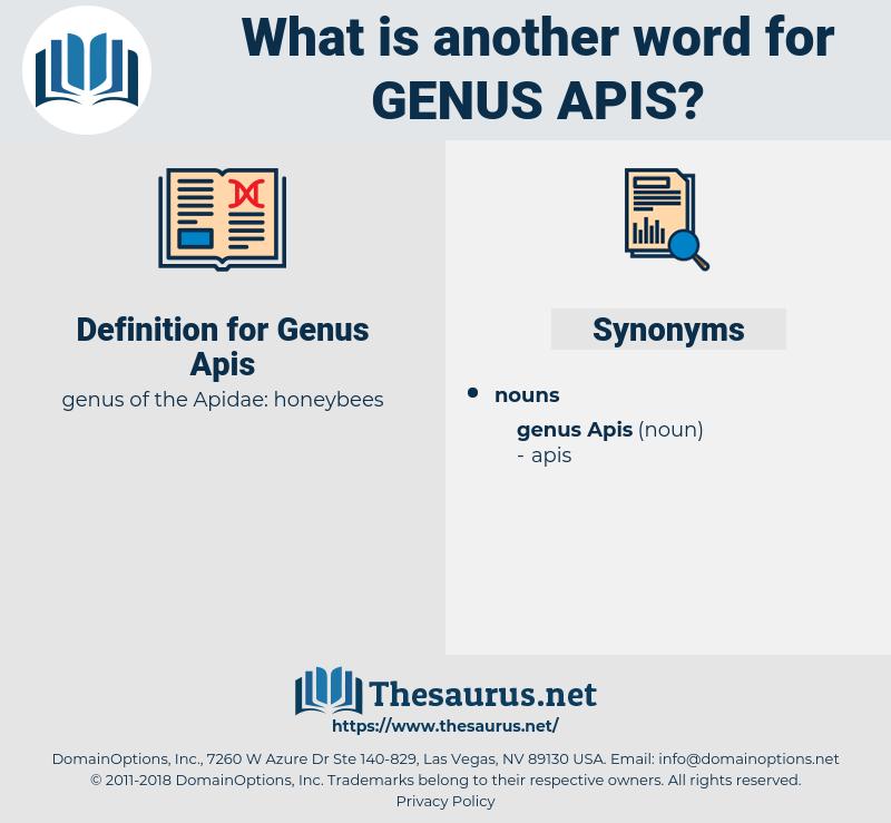 Genus Apis, synonym Genus Apis, another word for Genus Apis, words like Genus Apis, thesaurus Genus Apis