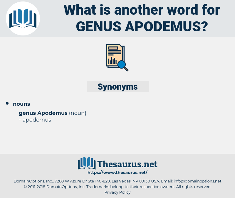Genus Apodemus, synonym Genus Apodemus, another word for Genus Apodemus, words like Genus Apodemus, thesaurus Genus Apodemus
