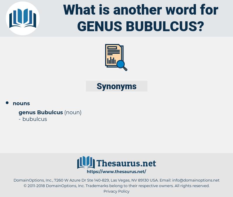 Genus Bubulcus, synonym Genus Bubulcus, another word for Genus Bubulcus, words like Genus Bubulcus, thesaurus Genus Bubulcus